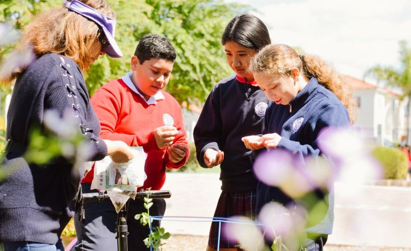 Do you know where your food comes from?  St. Rose of Lima students do.